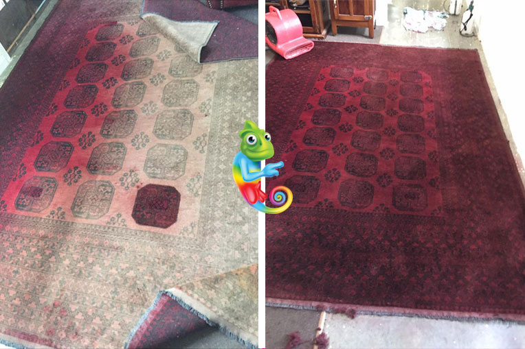 Restoring this rugs colour